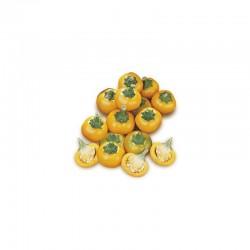 Chili Pepper Cherry Yellow seeds